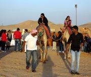 Emirates Tours & Safari