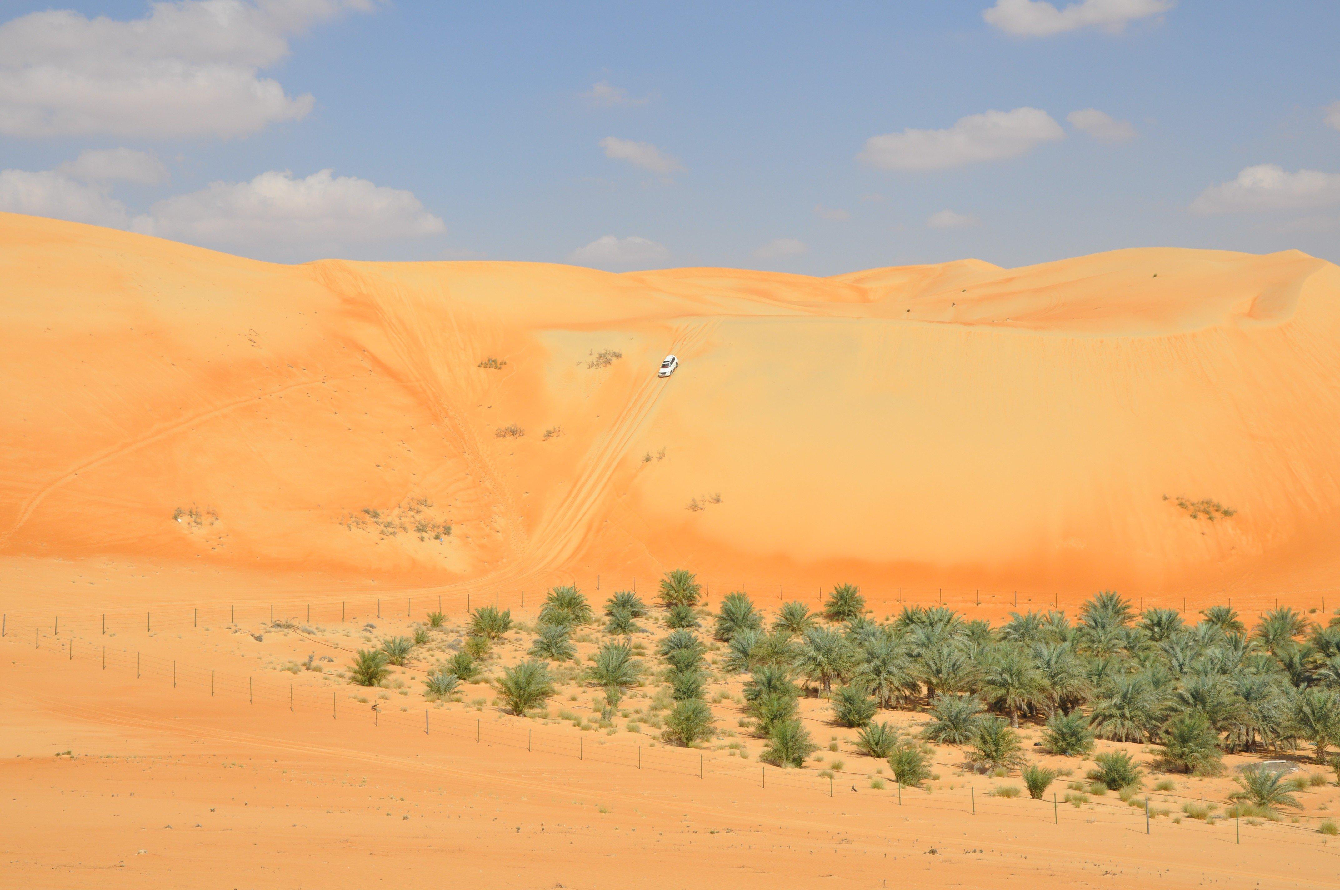 Oasis Travel And Tours Abu Dhabi