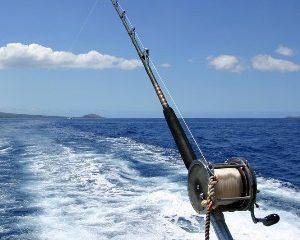 deep-dea-fishing-mauritius