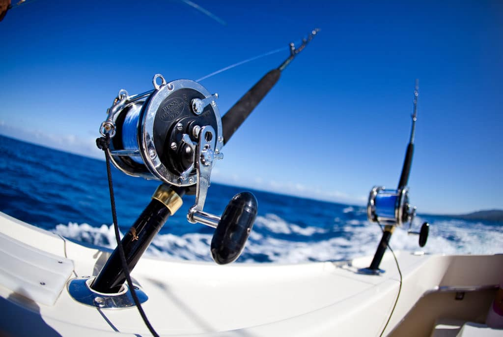 Deep sea fishing in abu dhabi emirates tours and safari for Best time to go deep sea fishing in the gulf