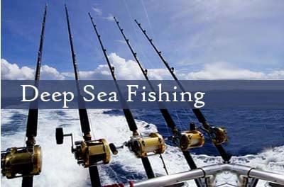 Deep sea fishing in abu dhabi emirates tours and safari for What is deep sea fishing