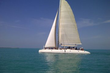 Catamaran 60 pax - Emirates Tours & Safari